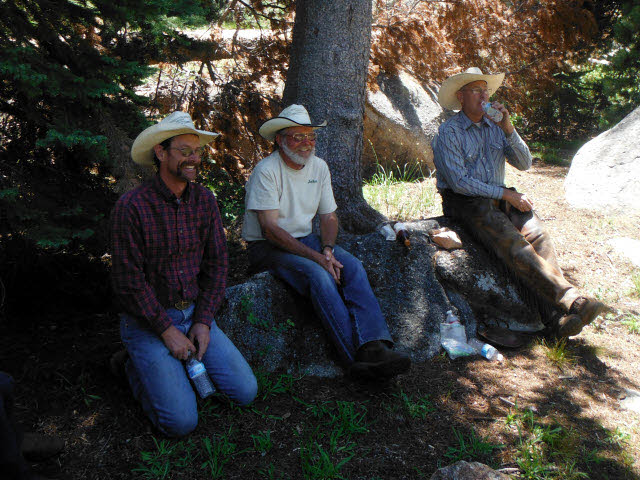Three adult cowboys in the forest